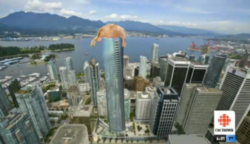 trump tower vancouver +